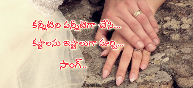 Kannitini Pannitiga Chesi Song Lyrics from Gangotri - Allu Arjun